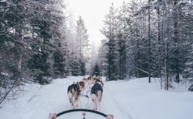 Voyage Finlande Elogedumonde 06